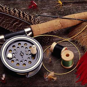 Охотничьи и рыболовные магазины Арьи
